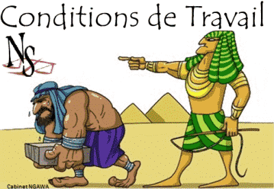 avocat conditions de travail